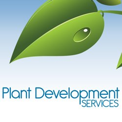 Plant Development Services