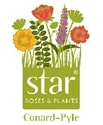 Star® Roses & Plants -- The Knock Out® Family of Roses