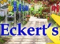 Eckerts Greenhouse -- Hanging Baskets